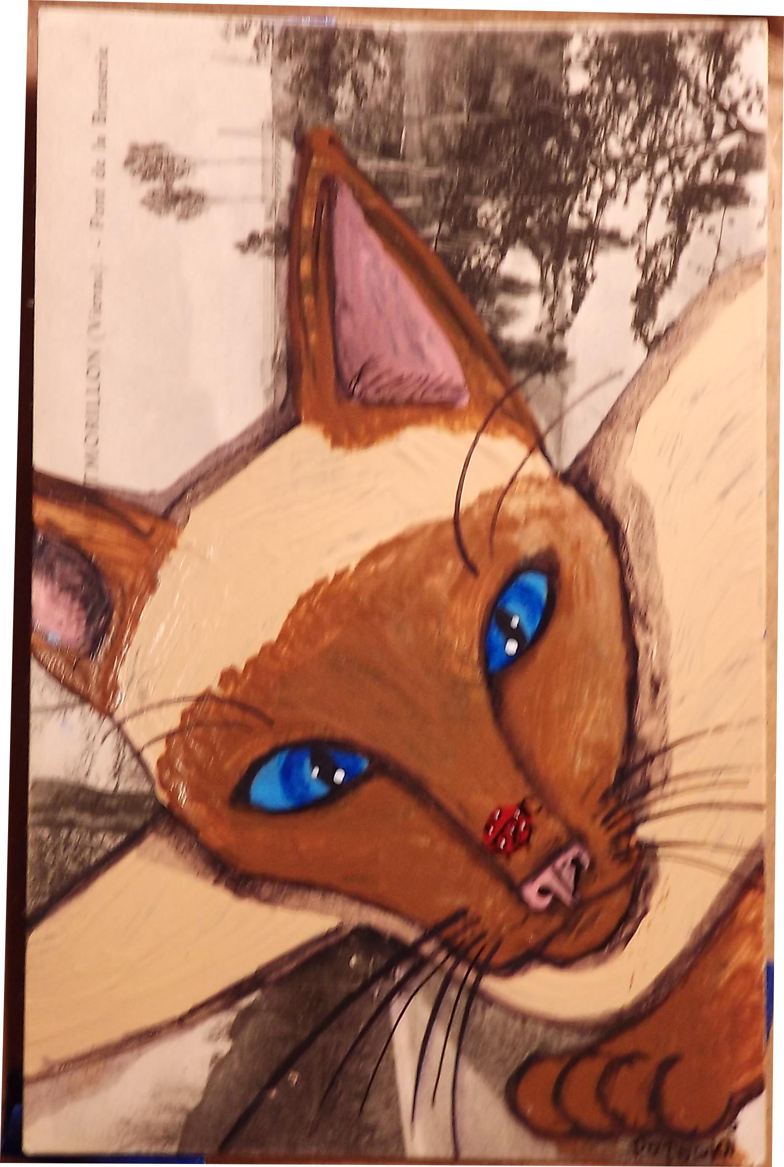 Siamese Cat and Ladybug